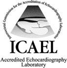 icon-ICAEL